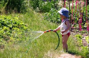 Child-water-garden