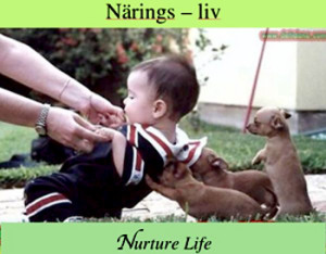 narings-liv-use